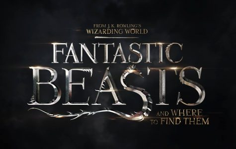"""Fantastic Beasts"" is a movie built for Potter fans"