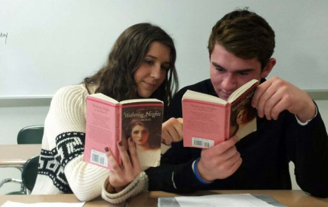 DHS literature: Reading through a feminist lens