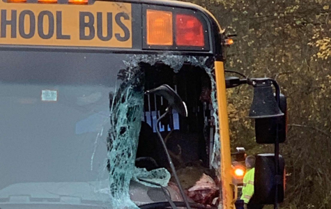 Hero emerges from strange accident between bus and deer